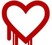 Heartbleed bug- what you need to know